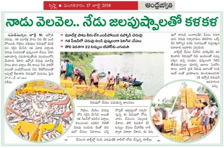 Fish Culture Pamidimukkala Jyothy clip 17-07-2018.jpg
