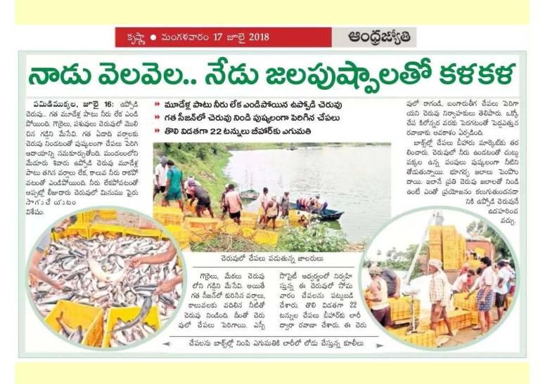 Krishna District Progress 2017-18_Page_38