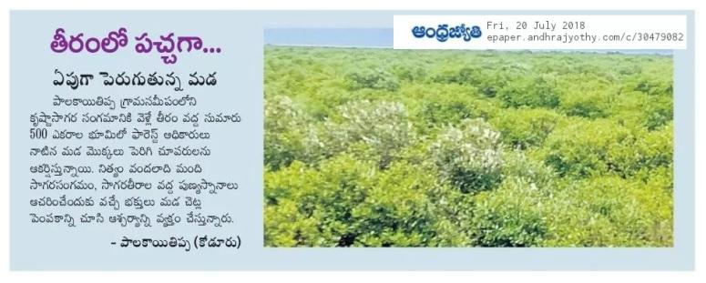 Mada Plantations Palakayatippa sea shore - Jyothy 20-07-2018.jpg