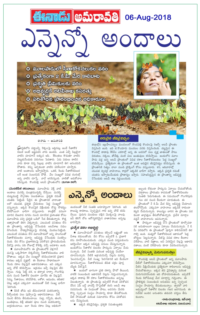 ButterFlies Eenadu 06-Aug-2018.jpg