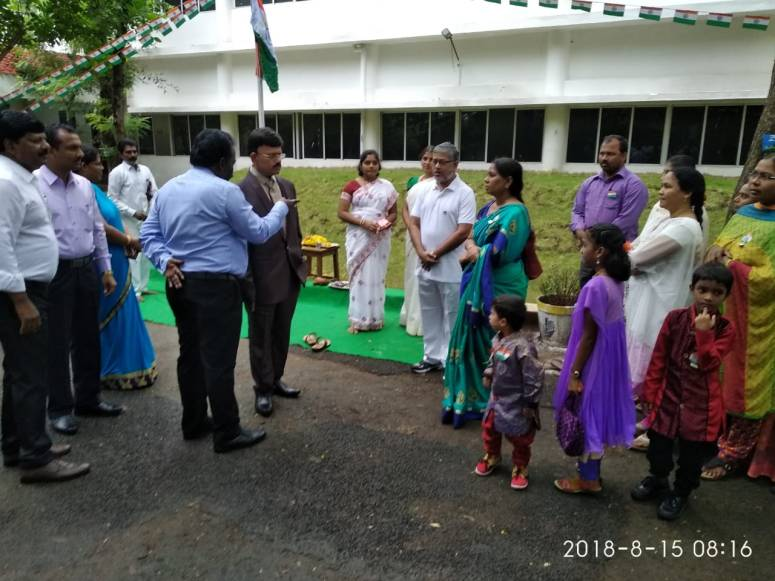 Collector at MTM Collectorate 2