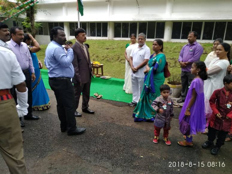 Collector at MTM Collectorate