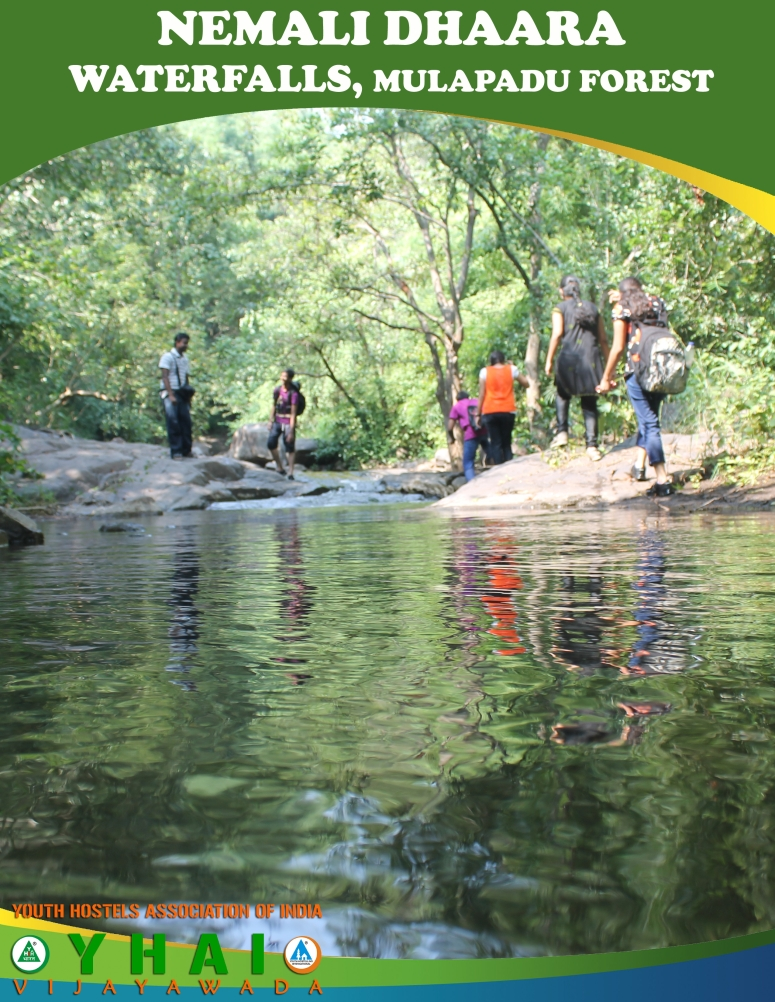 Nemali Dhaara WaterFalls - Mulapadu Forest