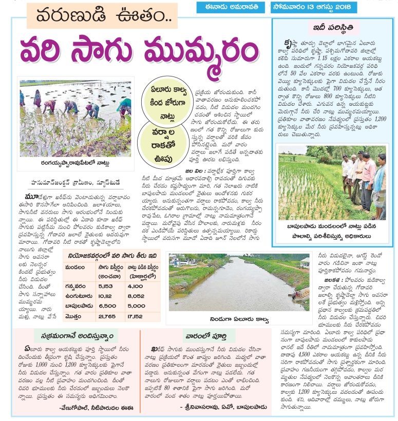 PaddyCultivation Active Gannavaram Eenadu 13-08-2018.jpg
