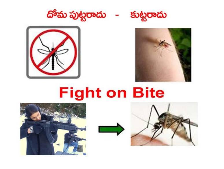 Mosquitoes-Diseases-దోమలు-వ్యాధులు_Page_14