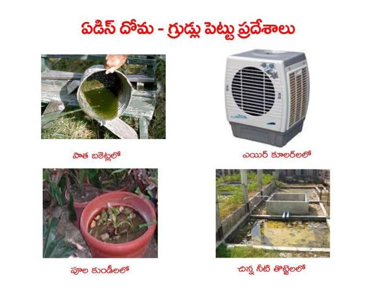 Mosquitoes-Diseases-దోమలు-వ్యాధులు_Page_18