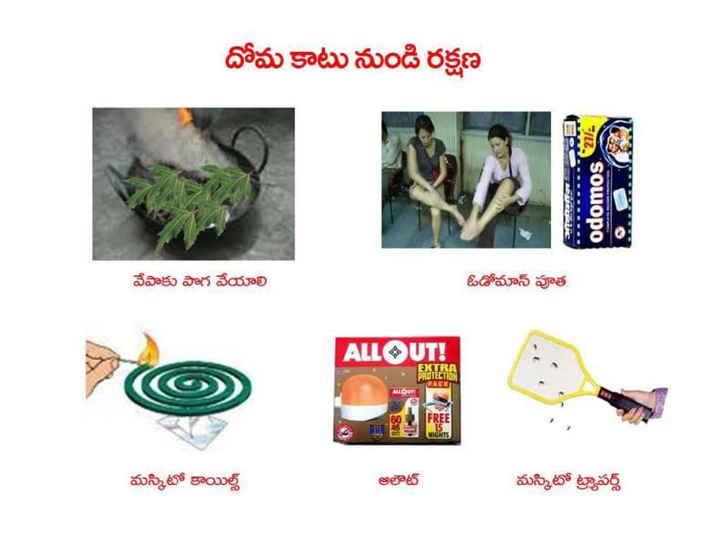 Mosquitoes-Diseases-దోమలు-వ్యాధులు_Page_34