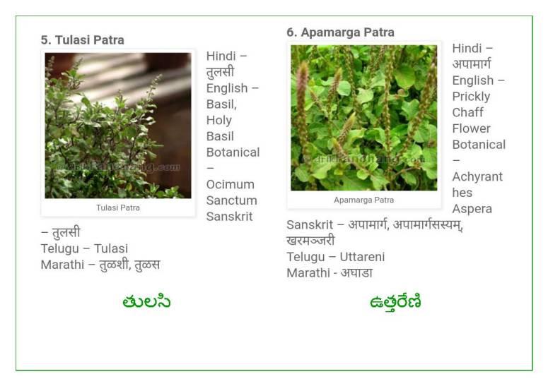 Vinayaka Patri 21 Leaves_Page_04