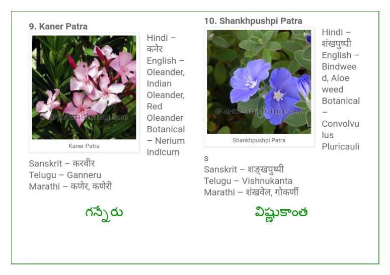 Vinayaka Patri 21 Leaves_Page_06