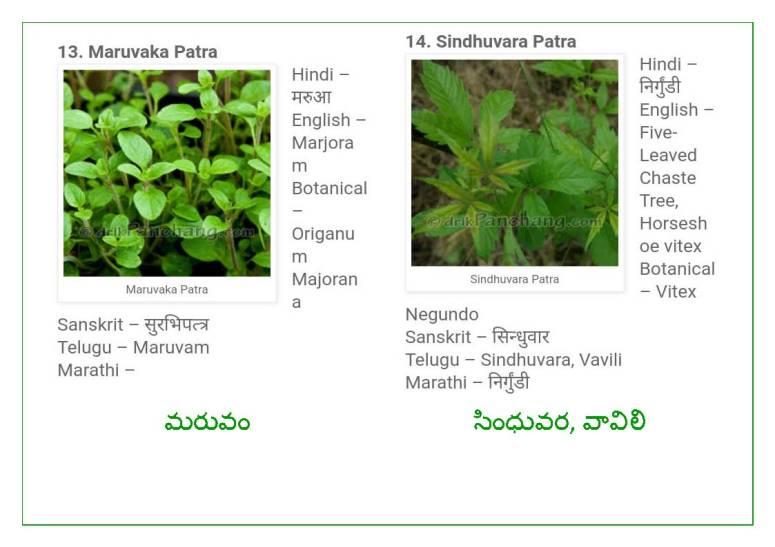Vinayaka Patri 21 Leaves_Page_08