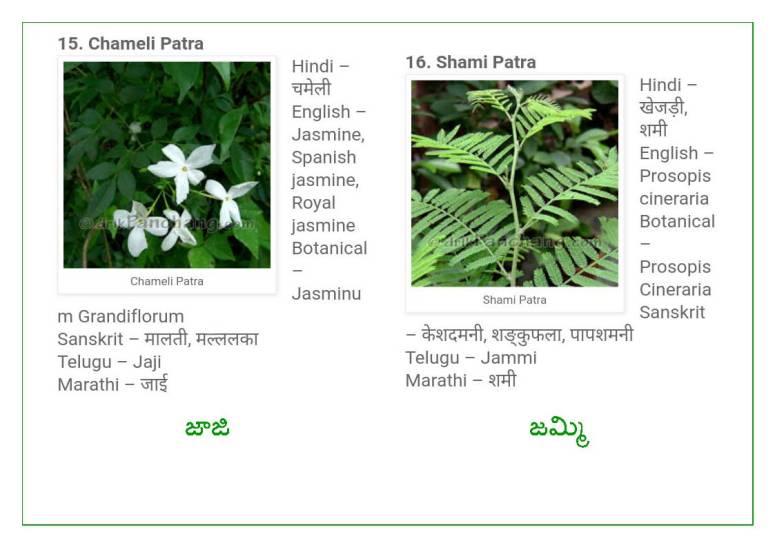 Vinayaka Patri 21 Leaves_Page_09