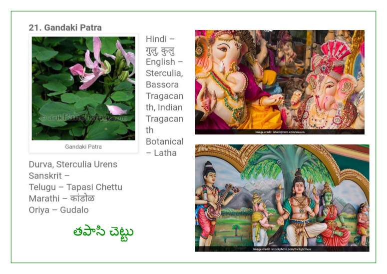 Vinayaka Patri 21 Leaves_Page_12