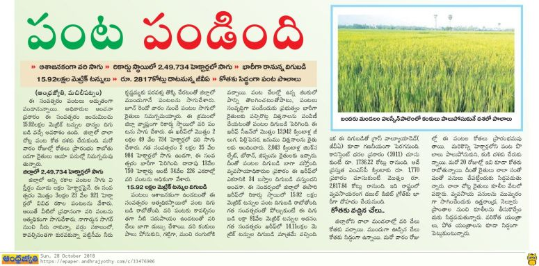 Paddy Crop Satisfactory Jyothy 28-10-2018