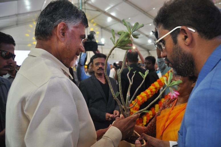 KanakaDurga Fly Over CM Photo 03