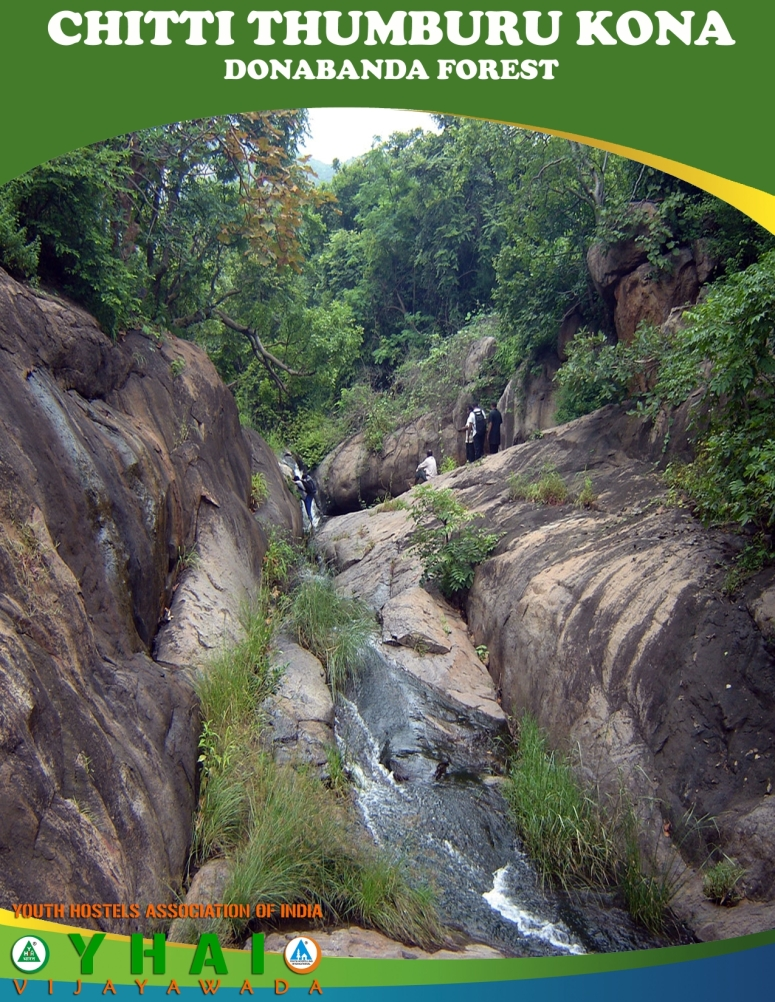 Chitti Thumburu Kona - Donabanda Forest